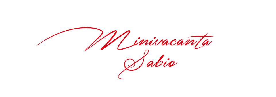 Sabio-banner-program-minivacanta.fw